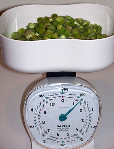 Rhubarb on an analog kitchen scale with the needle at 20oz/550g.