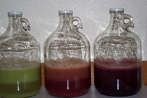 Red, green, and black grape juice each half filling a 1-gallon jug