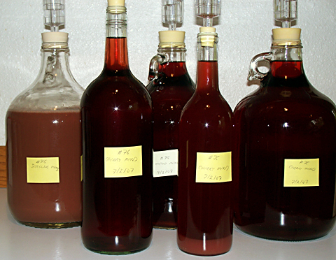Cherry Mead after racking on 9/3/07