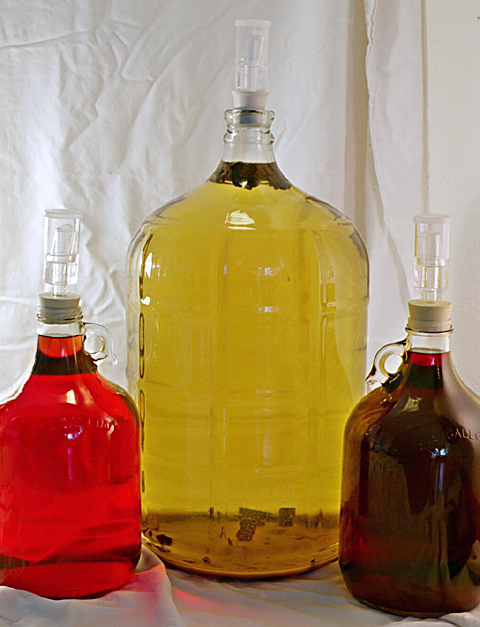 A 5-gallon carboy of wildflower mead flanked by two 1-gallon jugs. The light red jug on the left is raspberry mead, and the dark red one on the right is raspberry wine.