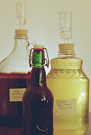 1/2 gallon ''backyard burgundy'', 1/2 gallon honey apple, and a 1-pint leon-pinot